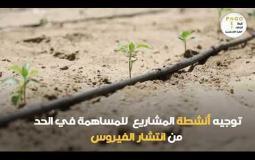تدخلات المنظمات الأهلية الزراعية في قطاع غزة لمواجهة فيروس كورونا المستجد