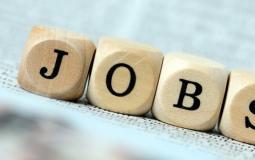 job3.jpg